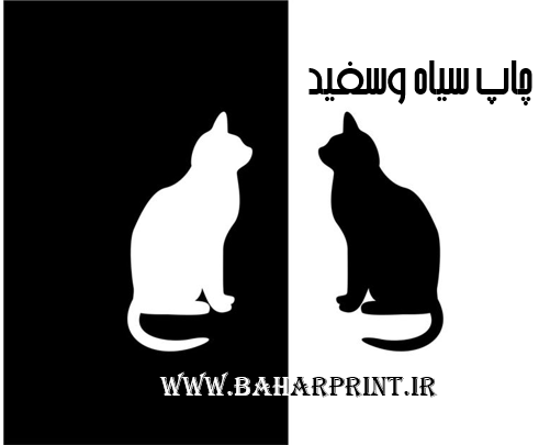 چاپ سیاه وسفید